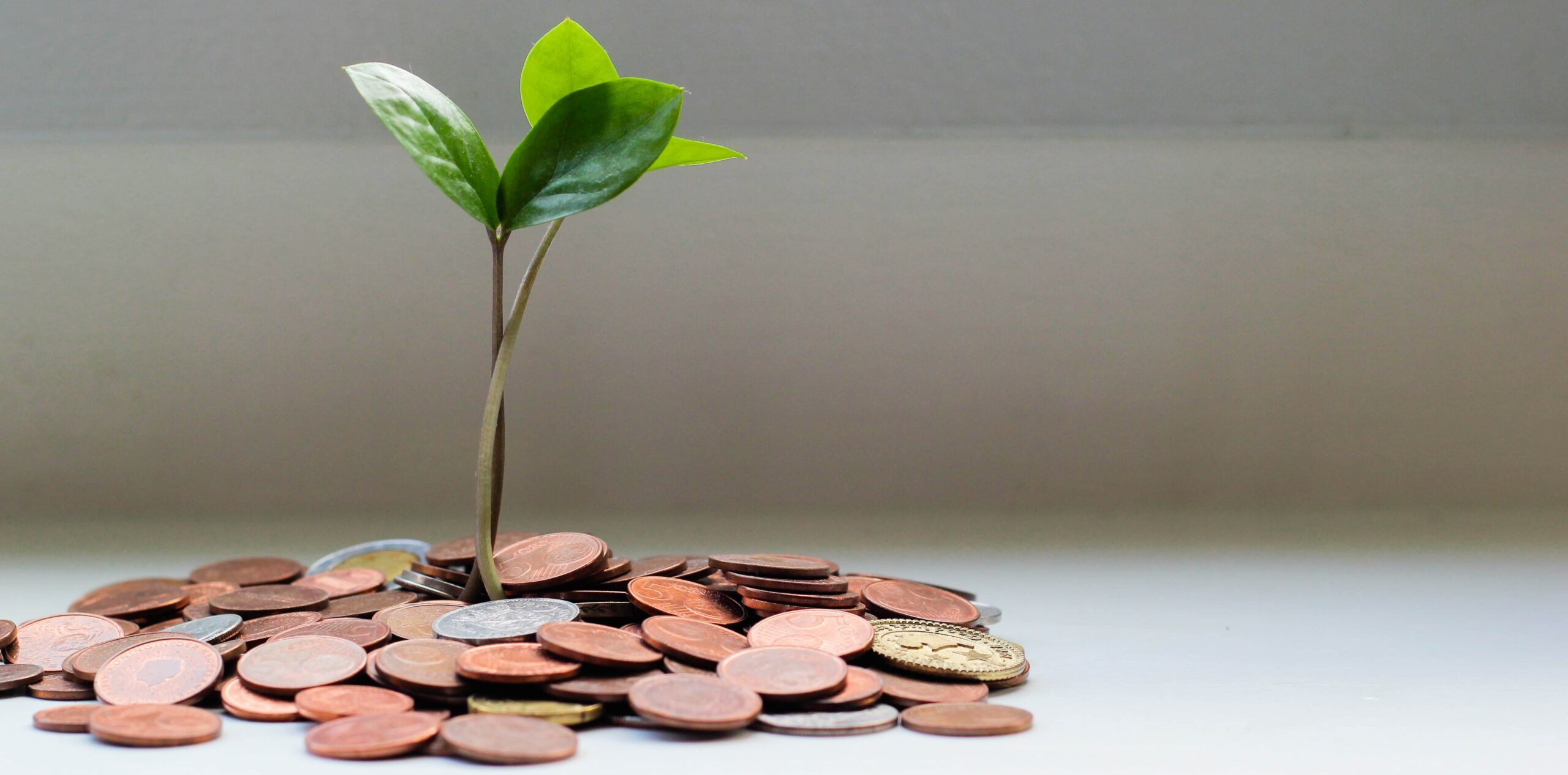 De invloed van geld op onze emoties en gedrag